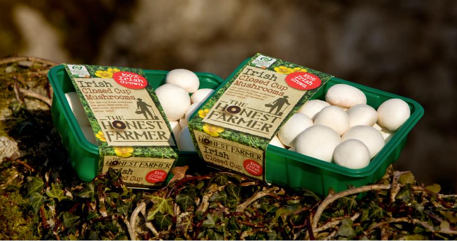 The Honest Farmer – Codd Mushrooms
